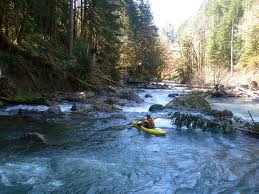 downstream processes